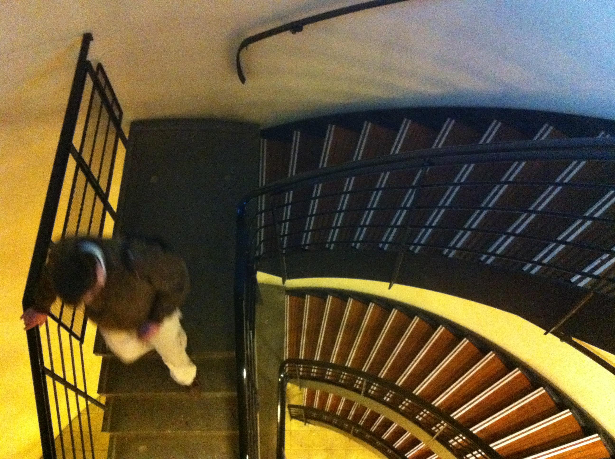 TE-SERIE-STAIRS-IMG_6261.JPG