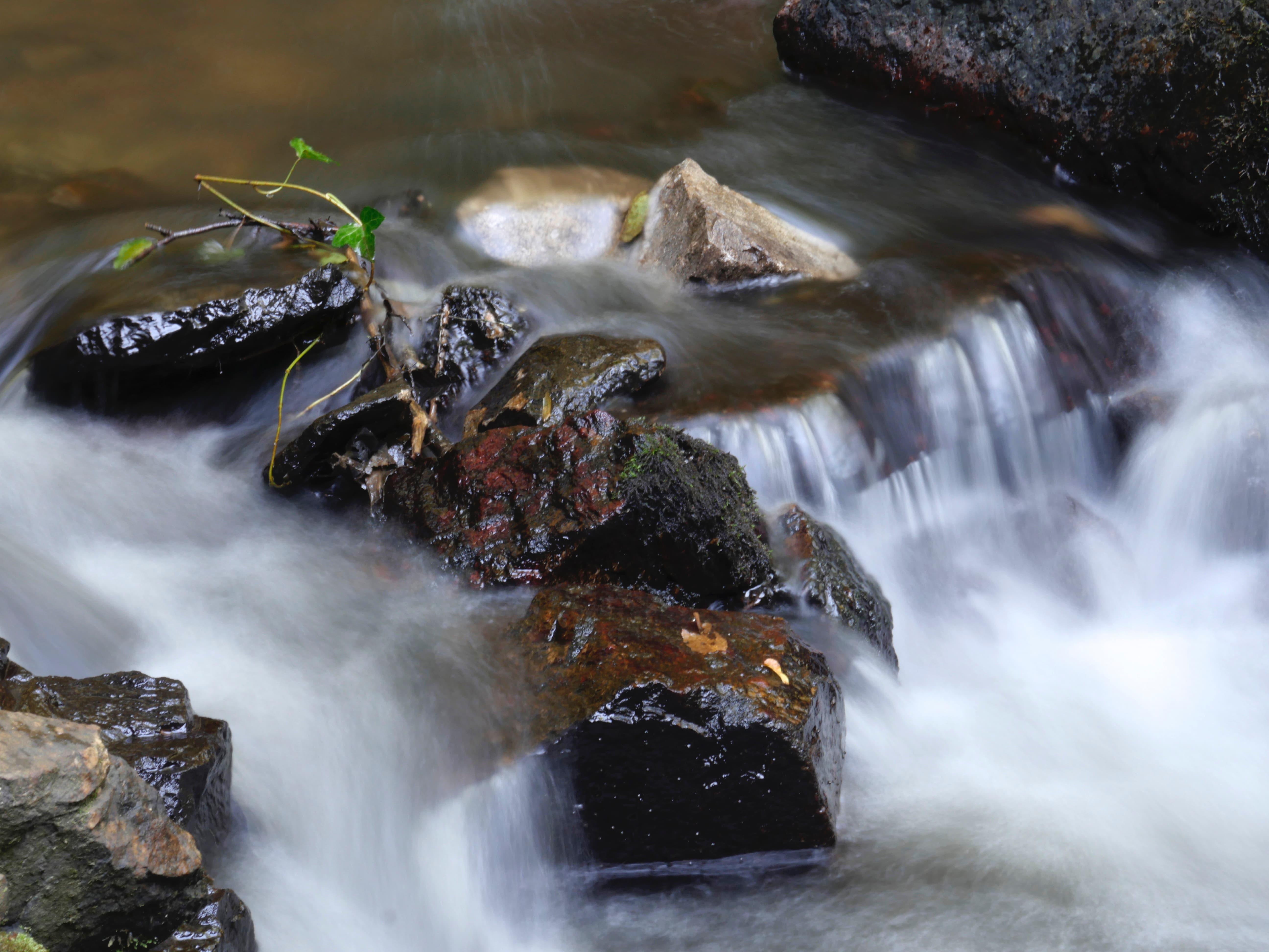 andries_rivier2-pichi.jpg